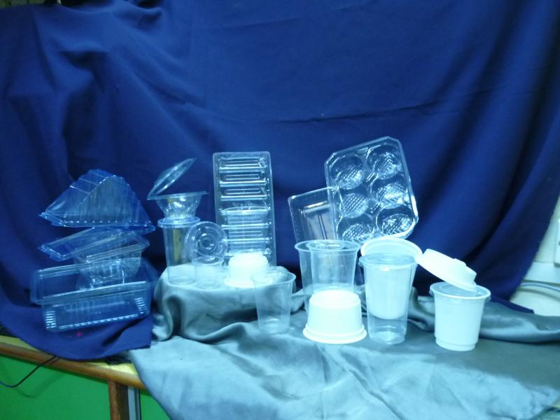 Disposable containers and trays